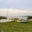Alte Scheune, Reetdach, Usedom, Insel, Urlaub, Ferien, Ferienwohnung am Achterwasser, Familienurlaub, Loddin, Ostsee